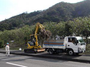 今回も、有田組が2トンダンプを提供。ボランティアの方々が刈ったままになっていた萱、剪定した枝なども搬出しました。