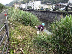 水路に転落しないように、安全帯(命綱)を斜面上のガードレールに結んで作業。