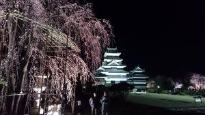 夜桜会2017_02